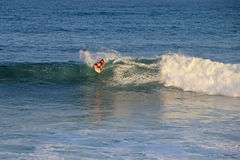 Matchless boogie boarder standing on the board and surfing, El Zonte beach, El Salvador Royalty Free Stock Photo