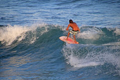 Matchless boogie boarder standing on the board and surfing, El Zonte beach, El Salvador Stock Photography