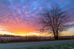 Matchless Morning. The early morning sunrise sky is painted with vivid and varied colors as shot from a country road in central Indiana Royalty Free Stock Images