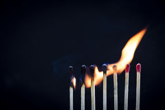 Matchstick Row Royalty Free Stock Photo