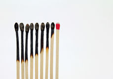 Matchsticks In A Row. Burned strike anywhere match sticks in a row; white background royalty free stock images