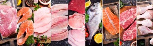 Matcollage av den olika nytt kött, höna och fisken arkivbilder