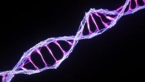 Mate alfa violeta púrpura aislado del rosa del lazo del filamento de la molécula de la DNA del plexo de Digitaces almacen de video