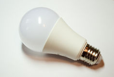 mate light bulb. On white background with reflection Royalty Free Stock Photo