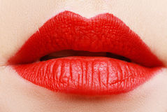 Mate lips Royalty Free Stock Image