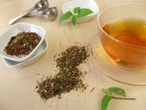 Mate Rooibos tea Stock Photos