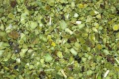 Mate tea. Detail of mate tea (holly tree Stock Image