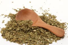 Mate Tea fotos de stock