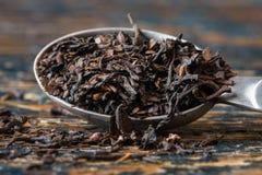Mate Tea foto de stock