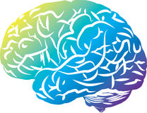 Colorful Brain Stock Photography