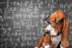 matematyka obrazy royalty free