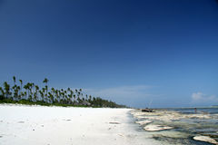 Matemwe Beach, Zanzibar Royalty Free Stock Photography
