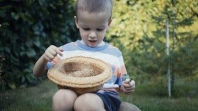 Materiał filmowy rolna chłopiec trzyma małego kurczątka plenerowy w rękach zbiory wideo