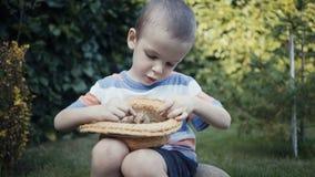 Materiał filmowy rolna chłopiec trzyma małego kurczątka plenerowy w rękach zdjęcie wideo