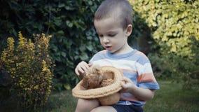 Materiał filmowy rolna chłopiec trzyma małego kurczątka plenerowy w rękach zbiory