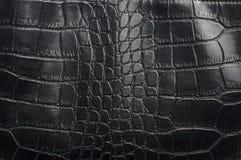 Materiał z teksturą gad skóra, czerni tekstury gridd/ Obraz Royalty Free