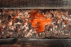 Materiały budowlani drewno i drewno barkentyna jako tex i tło Obraz Royalty Free
