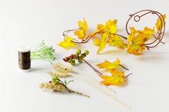 Materiały dla jesień wianku z jagodami Robi mię yourself na instrukcjach Zdjęcia Stock
