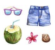 Materia del viaje de las vacaciones de verano, objetos de la playa: pantalones cortos, gafas de sol, coco, cáscara, flor del plum stock de ilustración