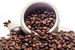 Materia di caffè fotografie stock