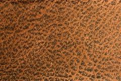 Materia textil 01 Fotografía de archivo
