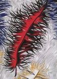 Materia textil con la pluma Imagen de archivo