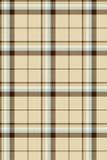 Materia textil del tartán del modelo Imagen de archivo