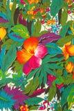Materia textil, flores tropicales Imagen de archivo