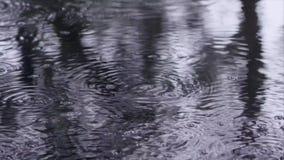 materiału filmowego deszcz na wody powierzchni zdjęcie wideo