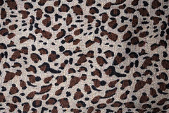 Material in animal skin pattern, a background Stock Image