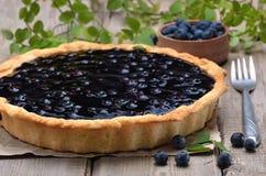 material: blåbär gräddfil, socker, två ägg Royaltyfria Bilder