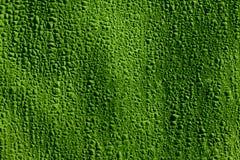 Material de construcción protector verde Imágenes de archivo libres de regalías
