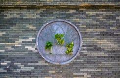 Material do tijolo da parede de tijolo de HD Imagens de Stock