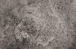 material naturligt rått plundra för bakgrundsbegrepp Arkivfoton