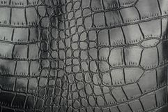 Black reptile leather texture with for background royalty free stock photography