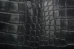 Black reptile leather texture with for background Royalty Free Stock Images