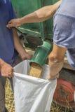 Materiale da otturazione della borsa del grano Fotografie Stock Libere da Diritti