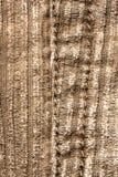 Materiale del velluto di cotone Immagini Stock Libere da Diritti