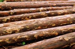 Materiale della biomassa Immagini Stock