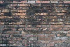 Materiale di base di struttura del muro di mattoni della costruzione di industria Fotografie Stock