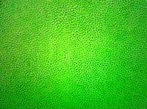 Materiale di cuoio verde Immagine Stock Libera da Diritti