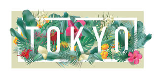 Materiale illustrativo tipografico incorniciato floreale della città di TOKYO di vettore Immagine Stock