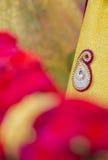 Materiale weddding indù della decorazione degli accessori dell'India Fotografia Stock Libera da Diritti