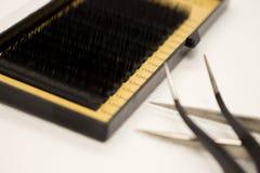 Materiales para la extensión de la pestaña Cepillos, accesorios para las extensiones de la pestaña imagen de archivo
