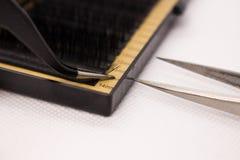 Materiales para la extensión de la pestaña Cepillos, accesorios para las extensiones de la pestaña imagenes de archivo