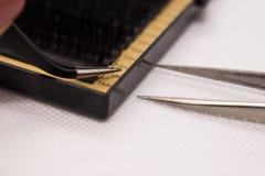 Materiales para la extensión de la pestaña Cepillos, accesorios para las extensiones de la pestaña foto de archivo libre de regalías