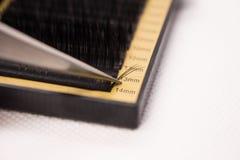 Materiales para la extensión de la pestaña Cepillos, accesorios para las extensiones de la pestaña imágenes de archivo libres de regalías