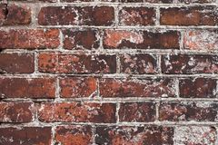 Materials bricks Stock Image
