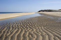 materiel för strandfotokust Royaltyfria Bilder