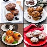 Materiel-foto-collage-av-muffin-med-choklad-bär-frukt-mintkaramell Arkivbild